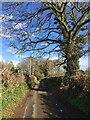 SP2874 : Blind Lane, Crackley by Robin Stott