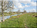 TG3426 : Path beside Canal by David Pashley