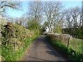 NY7408 : Lane from Waitby towards Soulby by JThomas