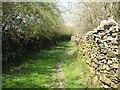 SD2784 : The Cumbria Way near Gawthwaite by Adrian Taylor