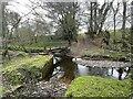 SS8119 : Ford on the Sturcombe River by John Walton