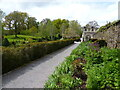 ST0519 : Herbaceous flower bed at Holcombe Court, in the parish of Holcombe Rogus by Marika Reinholds