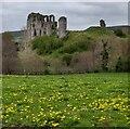 SO2980 : Clun Castle by Mat Fascione