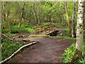 NT5268 : Footbridge over the Speedy Burn, Gifford by Jim Barton