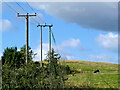 SO8691 : Pasture and powerlines near Swindon in Staffordshire by Roger  Kidd