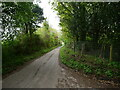 TG2632 : Souyheast on Pond Road by David Pashley