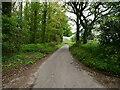 TG2633 : Northwest on Pond Road by David Pashley