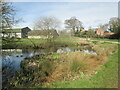 TA1844 : Pond  and  lane  into  Goxhill by Martin Dawes