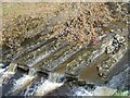 NZ0830 : Small weir on Ayhope Beck by Oliver Dixon