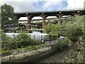 NZ2664 : Ouseburn: Farm and Viaducts by Anthony Foster