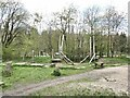 NZ0831 : Play equipment in Hamsterley Forest by Oliver Dixon