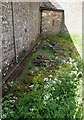 SO4522 : Garway - St Michael's Church - remains of Templar circular nave by Rob Farrow