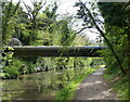 SP0578 : Pipebridge across the Worcester and Birmingham Canal by Mat Fascione