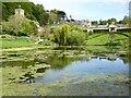 ST7475 : Pool at Dyrham Park by Philip Halling