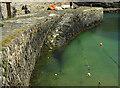SX0991 : South harbour pier, Boscastle by Derek Harper