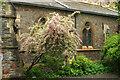 ST5874 : Blossom by Elmgrove Community Centre by Derek Harper