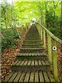 NT5433 : Wooden steps to the Eildon Hills, Melrose by Jim Barton