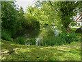 TL2933 : Pond on a little village green, Wallington by Humphrey Bolton