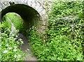SD5185 : Tunnel Lane Bridge Abutment by Adrian Taylor