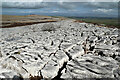 NY6410 : Limestone pavement in Great Asby Scar NNR by Andy Waddington