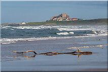 NU1437 : Ross Back Sands by Ian Capper