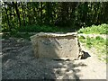 NZ2955 : Commemorative stone in Holley Park by Oliver Dixon