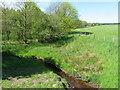 NS8762 : The River Almond by M J Richardson