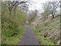 NS5779 : Strathkelvin Railway Walk by Richard Webb