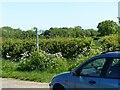 SK6246 : Lingwood Lane fingerpost by Alan Murray-Rust