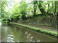 SJ6887 : Cutting on the Bridgewater Canal, Lymm by Christine Johnstone