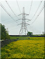 SE1226 : Power lines and pylon, Coley by Humphrey Bolton