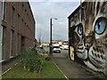 SP3265 : Cat, south Leamington street art 2/2 by Robin Stott