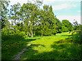 SE2928 : Parkland of Middleton Lodge, Middleton Park by Humphrey Bolton
