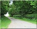 NZ3306 : Lane to Eastfields Farm by Gordon Hatton