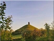 ST5138 : Glastonbury Tor by Anthony Parkes