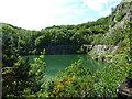 SO7638 : Gullet Quarry - Malvern Hills by Chris Allen