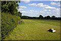 SP1362 : Field near Shelfield Park Farm by P Gaskell