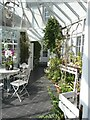 NO5649 : The Conservatory at Pitmuies House by Oliver Dixon