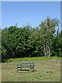SO8490 : Bench seat on Highgate Common in Staffordshire by Roger  Kidd