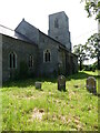 TG2331 : Westerly View of Church and Churchyard by David Pashley