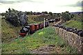 NZ2057 : Demonstration goods train at the Tanfield railway by Chris Allen