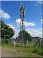 NS8865 : Telephone mast at Knowehead by M J Richardson