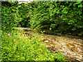SD7914 : River Irwell at Summerseat by David Dixon