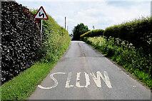 H4764 : Slow markings along Letfern Road by Kenneth  Allen