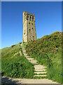 SE1513 : Steps to Victoria Tower, near Huddersfield by Malc McDonald