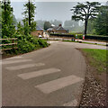 NT3368 : Pedestrian crossing, Steel Park by Mick Garratt