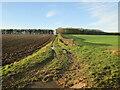 TA0362 : Bridleway  to  Garton  Balk by Martin Dawes