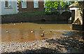 SS9512 : River Lowman by Derek Harper