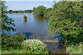 TQ2748 : New Pond by Ian Capper