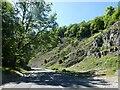 ST4854 : Road through Cheddar Gorge by Roger Cornfoot